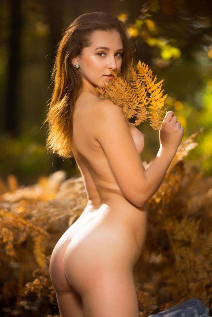 На фото красивая писечка в осеннем лесу.