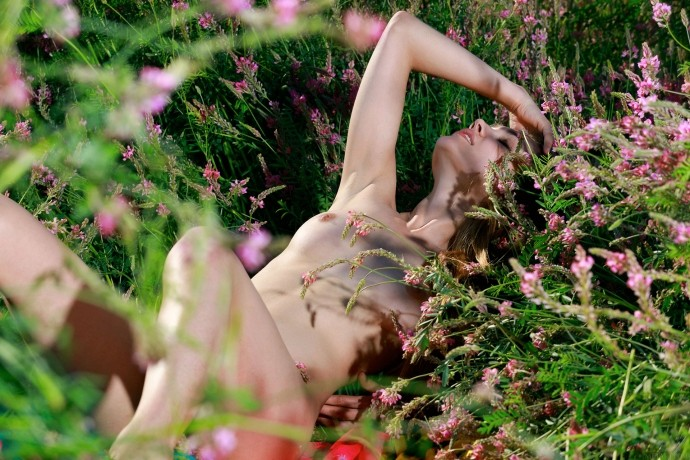 На фото бритая пися в цветочном поле.