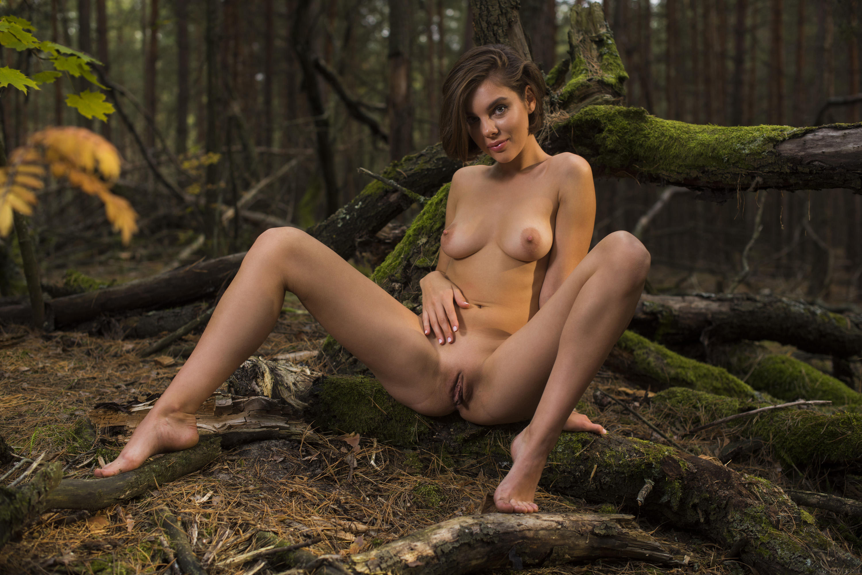 Free Forest Girls Sex
